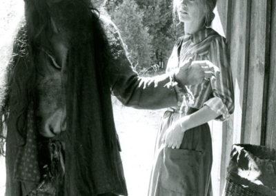 1979-IncredibleJourneyOfDrMegLaurel-JamesWoods-LW